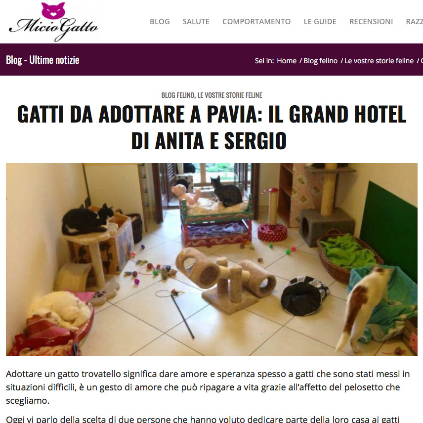 grand-hotel-miciogatto