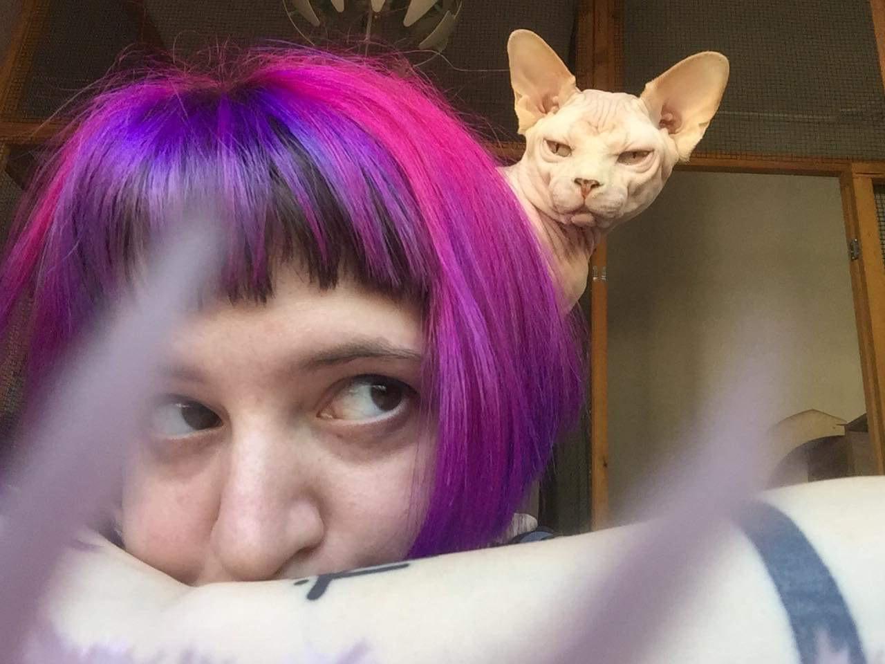 Alessia Bragagnolo pedigree gatto cane