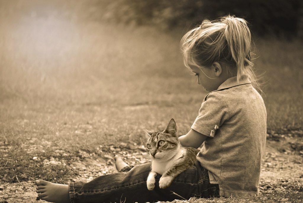 gastroenterite vaccino cani gatti