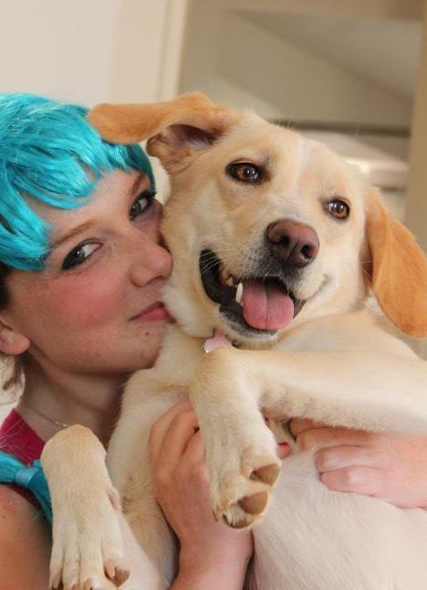 parvovirus cani gatti gastroenterite vaccino sintomi (3)