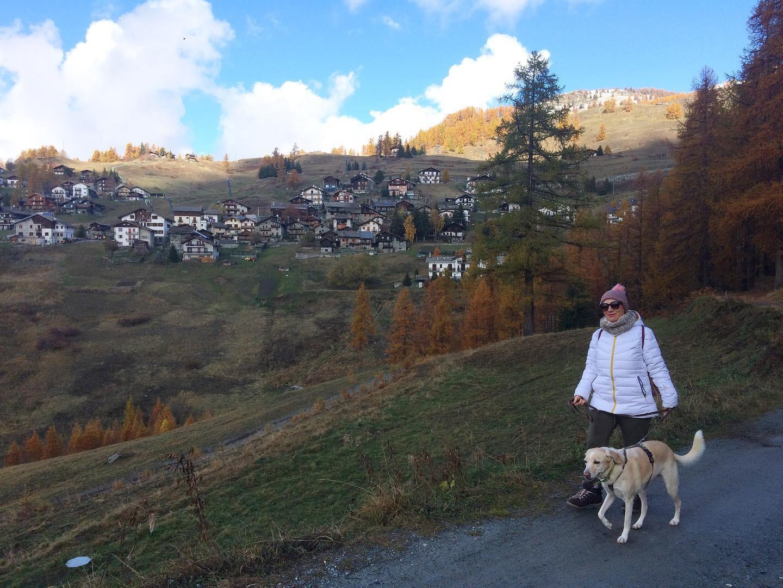 in vacanza con il cane in montagna 11