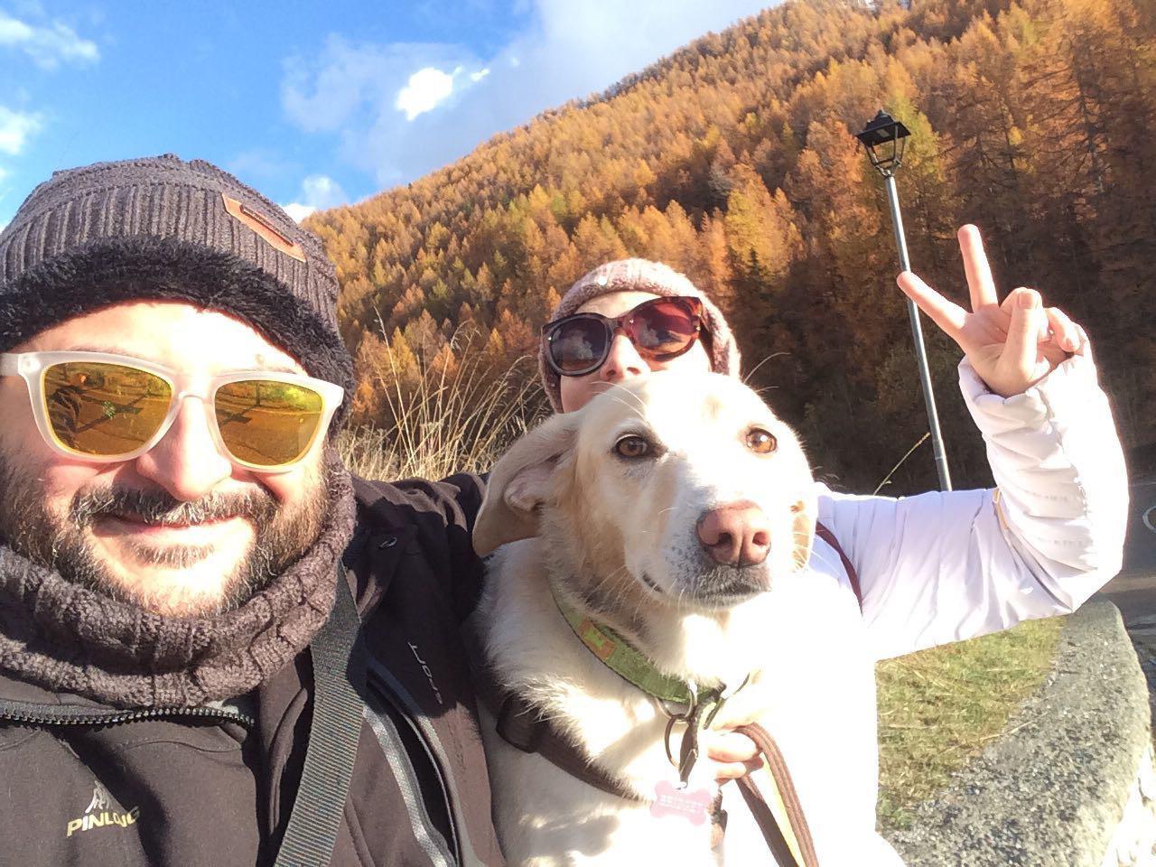 in vacanza con il cane in montagna 5