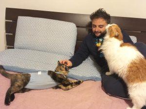 Come togliere peli di gatto dai vestiti (3)
