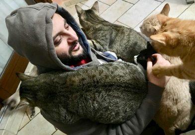 Consigli pratici e intelligenti per togliere i peli di gatto dai vestiti